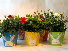 wholesale Easter Ceramic pots with flowering plants